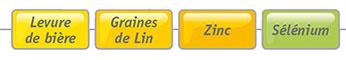 vitamines, minéraux et nutriments