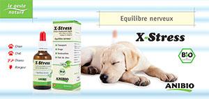 Fiche explicative X-Stress