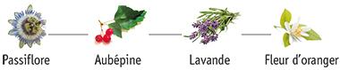 Plantes X-Stress