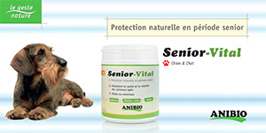 Brochure Sénior-Vital