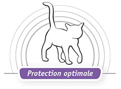 protection optimale