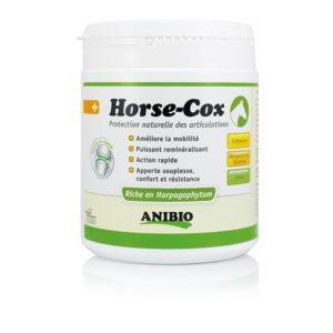Horse-Cox - Anibio