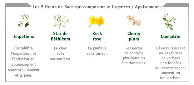 Tableau des Fleurs de Bach - Complexe Urgences Apaisement