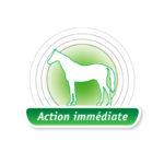 Melaflon-Cheval-Action-Immediate