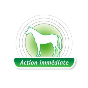 Melaflon Cheval : Action immédiate